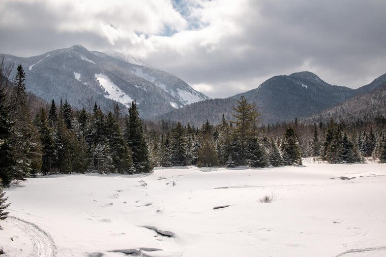 Snow on ground and pine trees in foreground of Adirondack Mountains