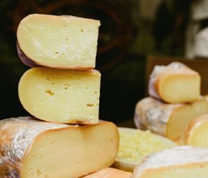 Wheels of artisan cheese at Talbott & Arding
